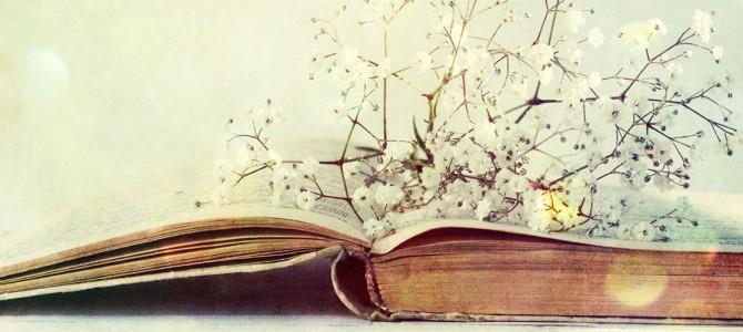 Bibliotecă Deschisă – inițiativă